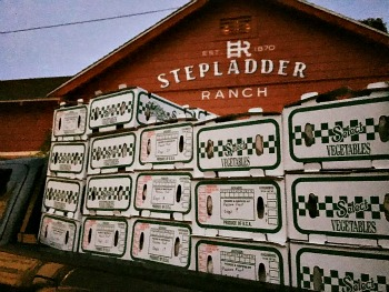Stepladder Ranch Picmonkey