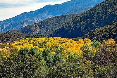 Cottonwood Sespe Wilderness Picmonkey