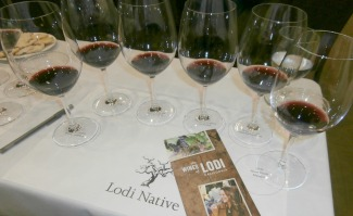 Lodi Native six wines and brochure Picmonkey