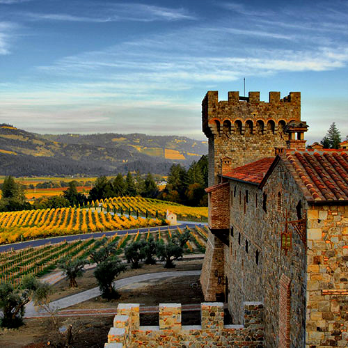 castello and vineyards