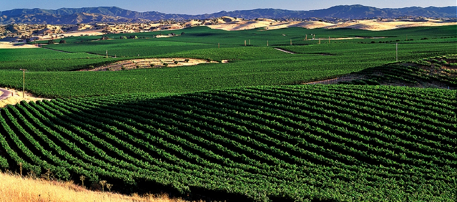 Highlands District of Paso Robles