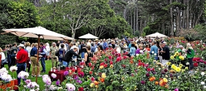 Mendocino Botannical Gardens is an idyllic spot for strolling and tasting