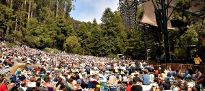 Stern Grove concert-goers in 2017