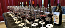 Array of wines for judges at the 2019 Mendocino wine competition