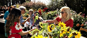 Visitors enjoy tastes before strolling through the Mendocin Botanical Gardens