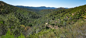 Mariposa County's hiking trails like Stockton Creek Preserve (pictured) provide beautiful Southern Sierra views of vistas, rivers and lakes and are all within minutes of Yosemite National Park.