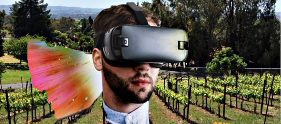 Are virtual goggles likely to be part of wine tourism's future?