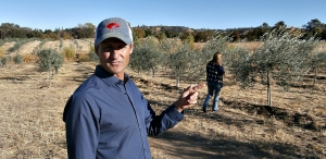 Felipe Ternero shows a visitor his Lincoln orchard