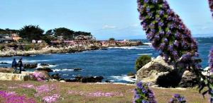 5 Reasons to Visit Monterey this Spring