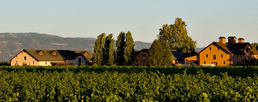 Trefethen -- not far from Highway 29 in the Napa Valley
