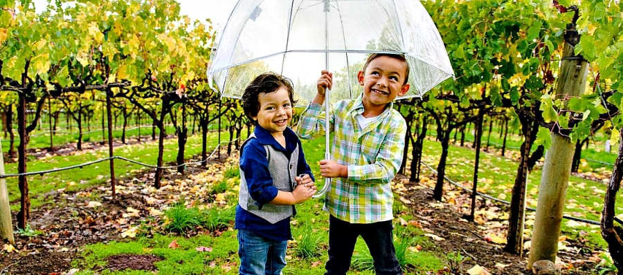 Exploring the vineyards is one of the ways kids can enjoy California wine country.