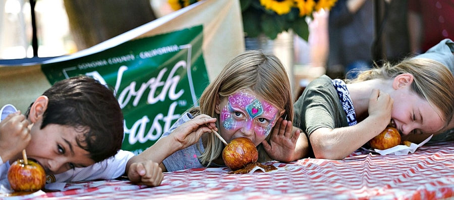 Gravenstein Apple Fair Set for Sebastopol