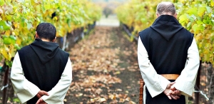 Monks of the Trappist-Cistercian order stroll the vineyard at New Clairvaux
