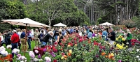 Winesong features wine tasting while strolling the Mendocino Coast Botanical Gardens.