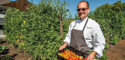 "Tomato Heaven? Chef Streeter ""shops"" the garden"