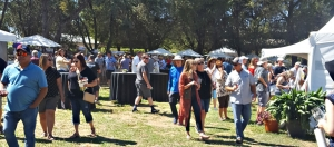 Terra d'Oro Hosts Barbera Festival